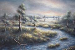 Naamio suo - Masked swamp | 2011