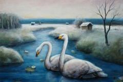 Joutsenten ilta - Evening of swan 2015